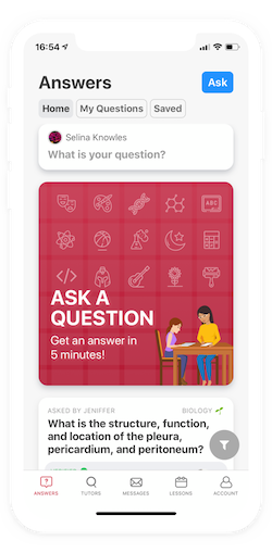 Screenshot of app question answer feed